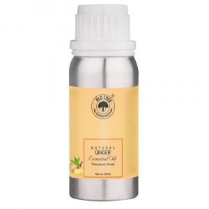 Ginger Oil 250 ml