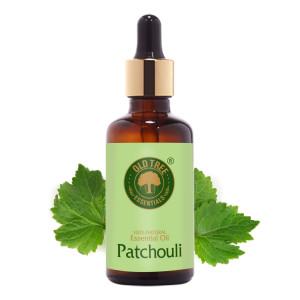Patchouli Oil 50