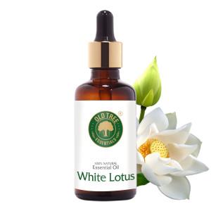 White Lotus 50